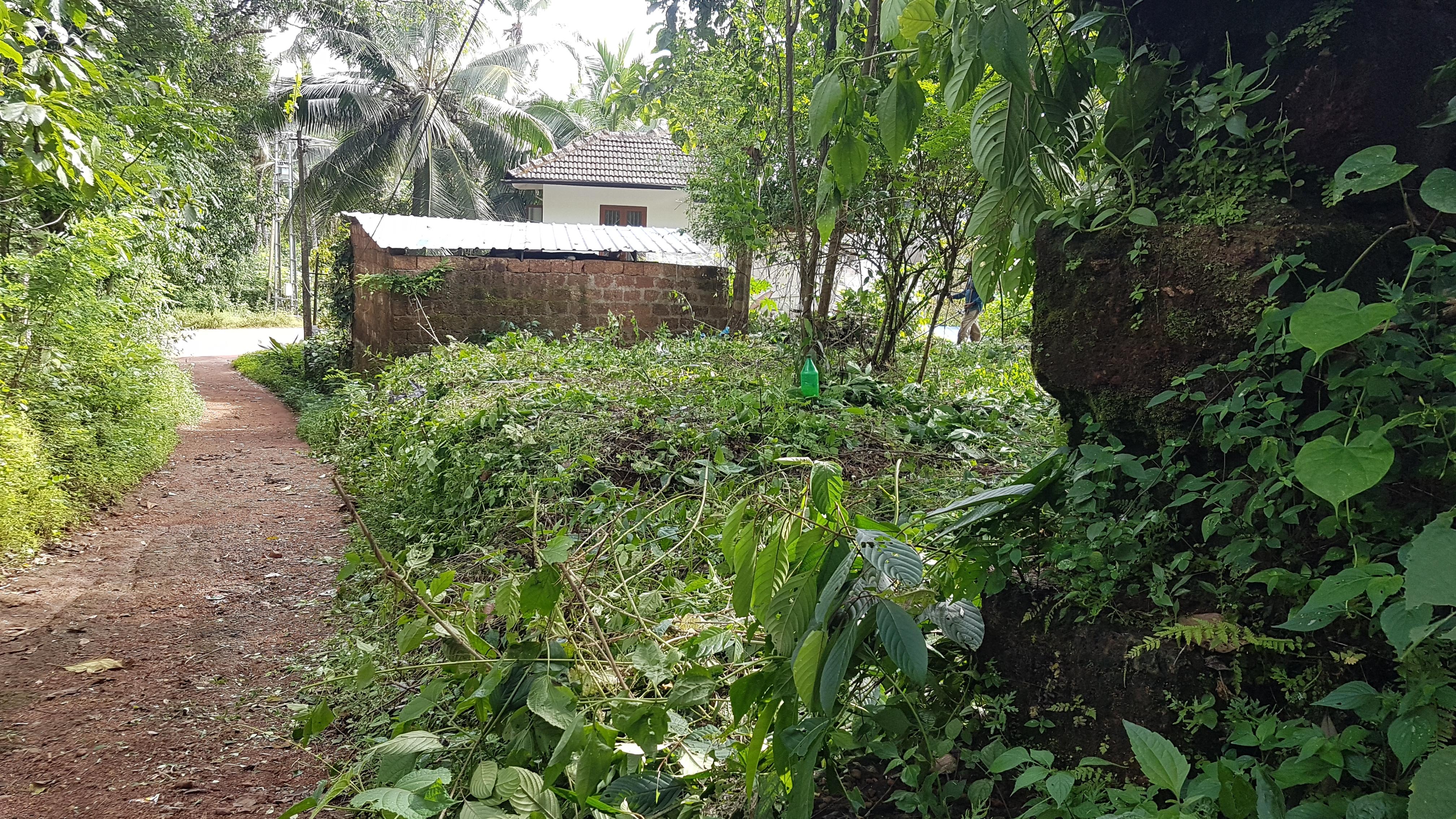 East facing 10 cents rectangular plot sale – Manantheri, Chittariparamba, Kuthuparamba