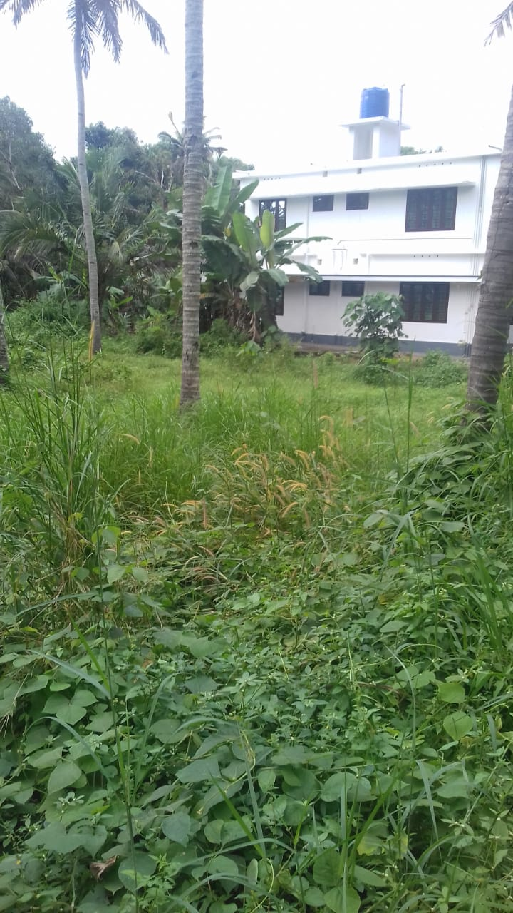 Ideal residential plot 28 cents for sale