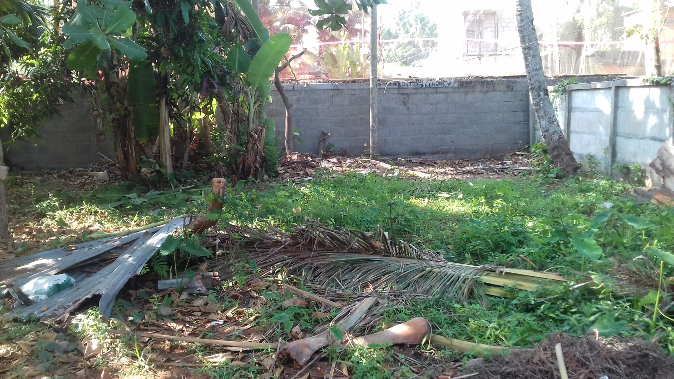 5 Cents of Plot for immediate sale in Kollam Uliyakovil