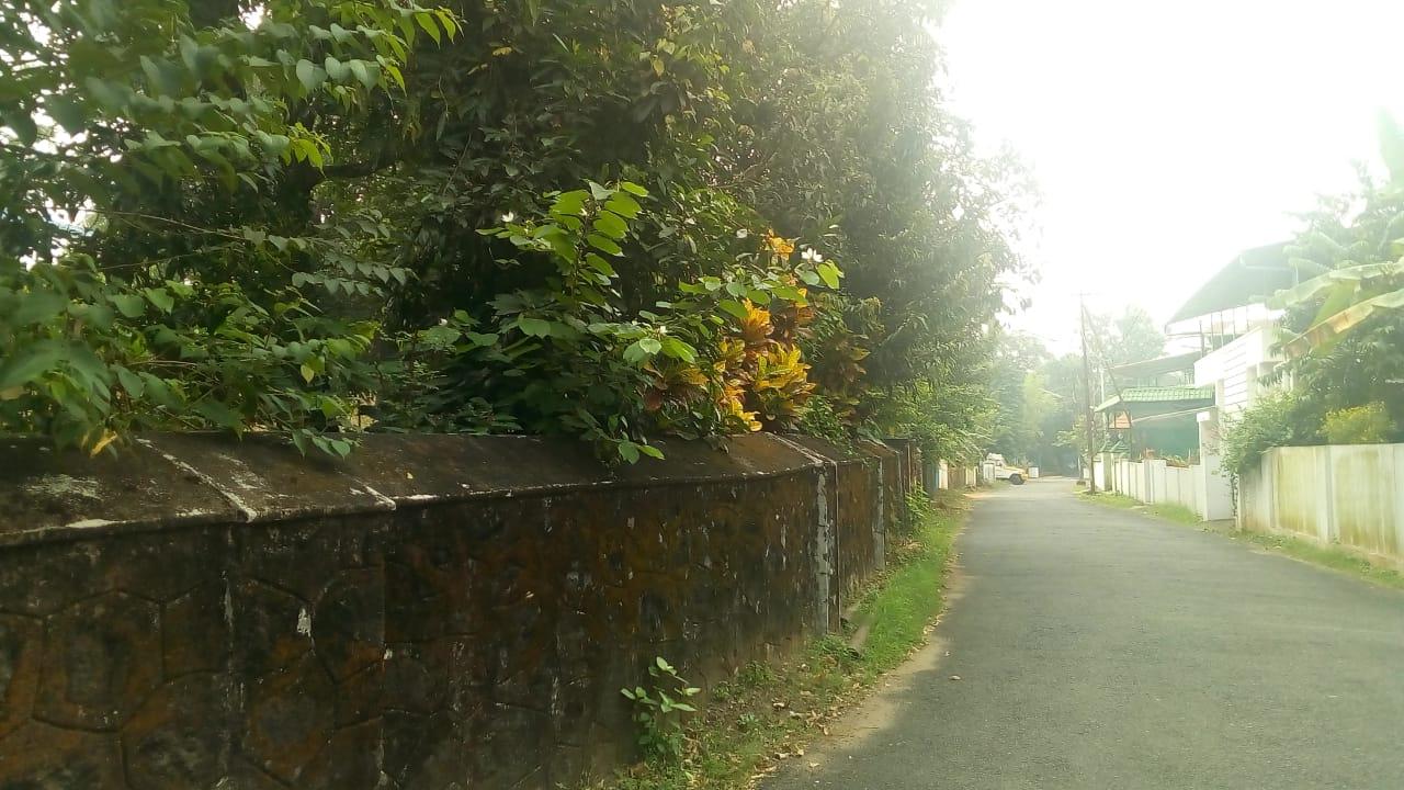 2.9 Acre Land For Sale At Ollur-Marathakkara Centre,Thrissur