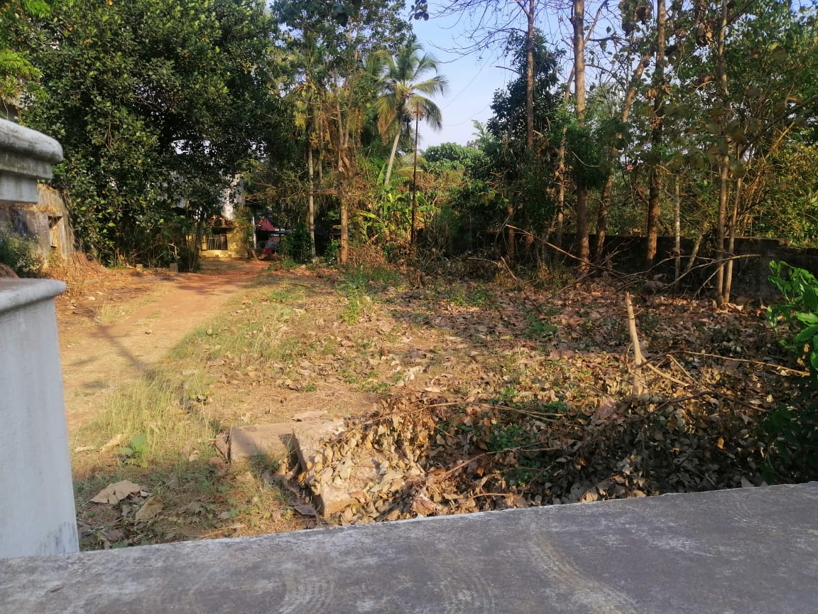 44 cents commercial land for sale in mission quarters, Thrissur