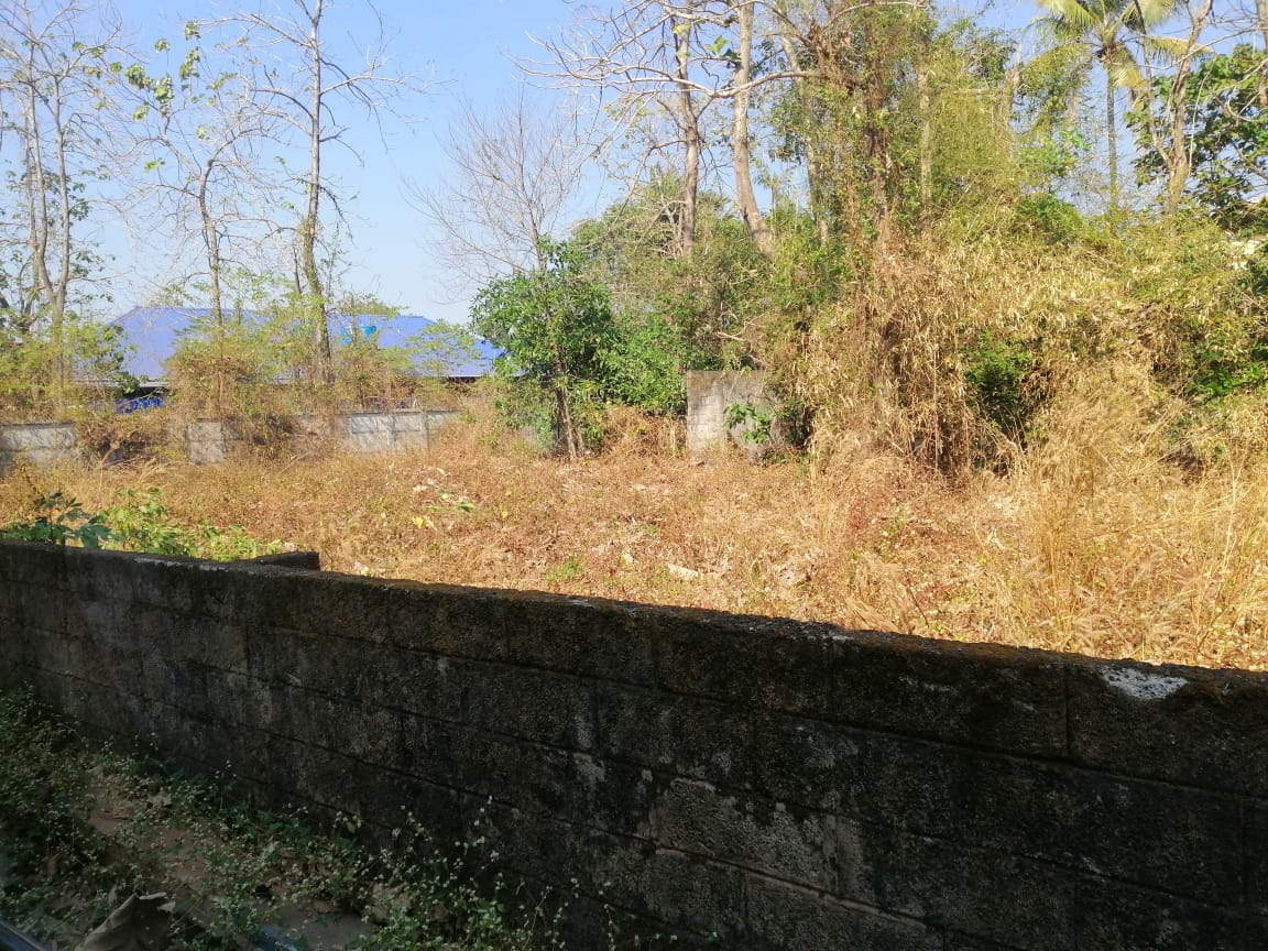 11 Cents Residential Land For Sale in Kuttur, Thrissur
