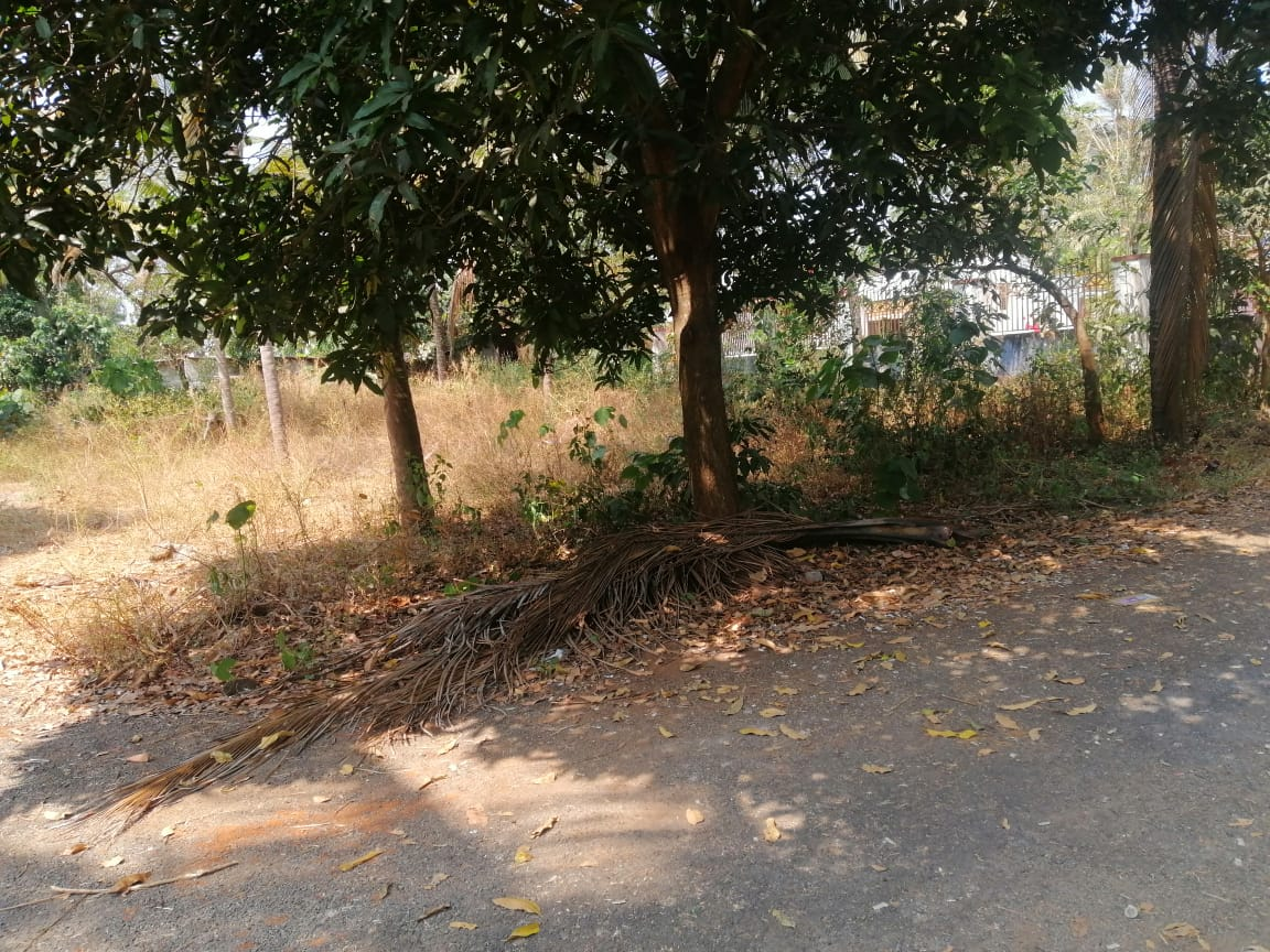 8.75 cents Residential Land For Sale In Mundur, Thrissur