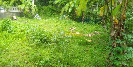 സ്ഥലം ഉടൻ വില്പനക്ക് !!! Near Karoorkavu Jn,  Vettickal-Piravom Rd,  Memmukhom,  Kerala