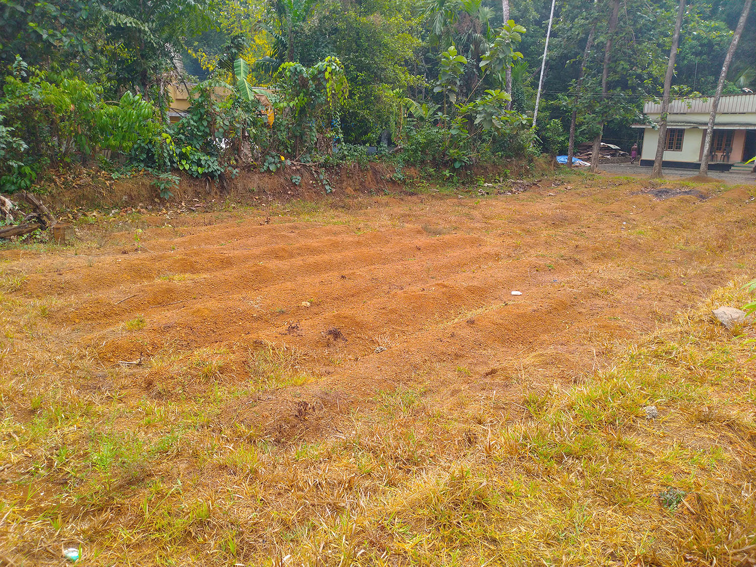 10 cent Residential Land for Sale Near Perumbavoor,  Kerala