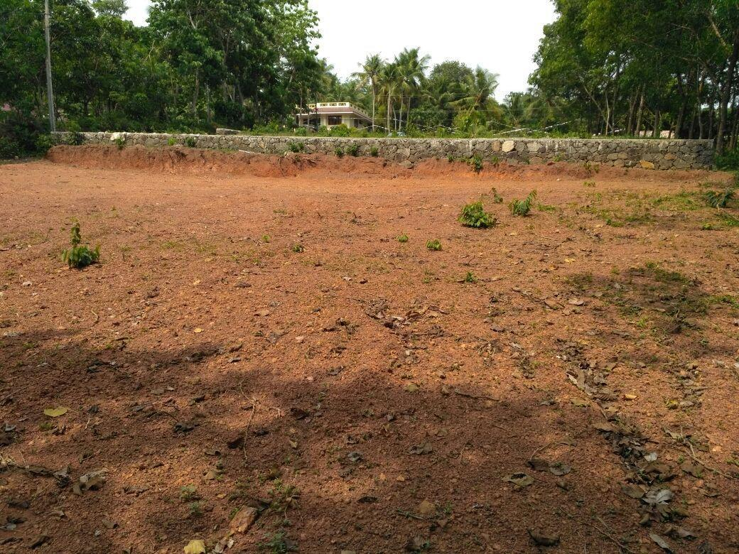 Residential Land for Sale – 15 Cent