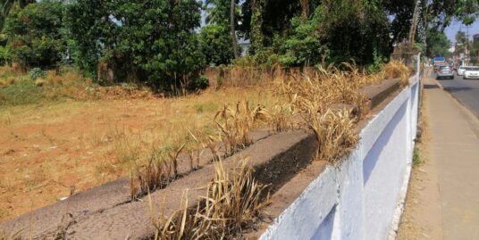 11 Cents Land For Sale At Kolazhy, Thrissur, Kerala