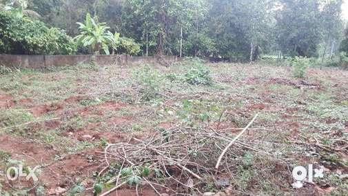 EXCELLENT HOUSE PLOT FOR SALE AT MUDIKKARAI JUNCTION NEAR KURUPPAMPADY