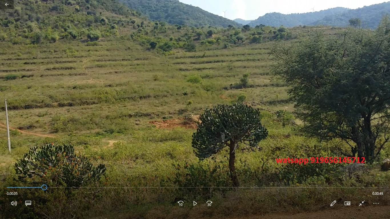 Lowest Priced 6.30-acre farm land / Cheap Agricultural Land