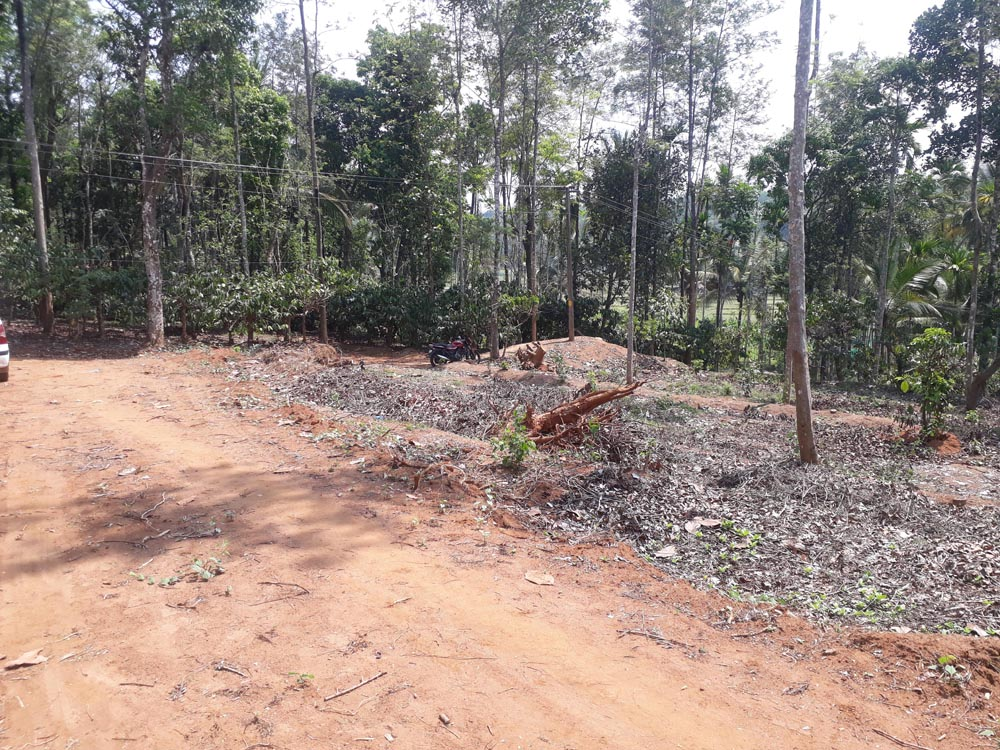 10/12/16/28 Cent Land for sale in sulthan bathery