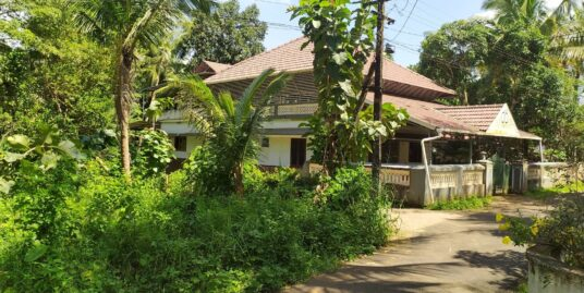 25 cents of prime plot with tarred panchayat road on two sides