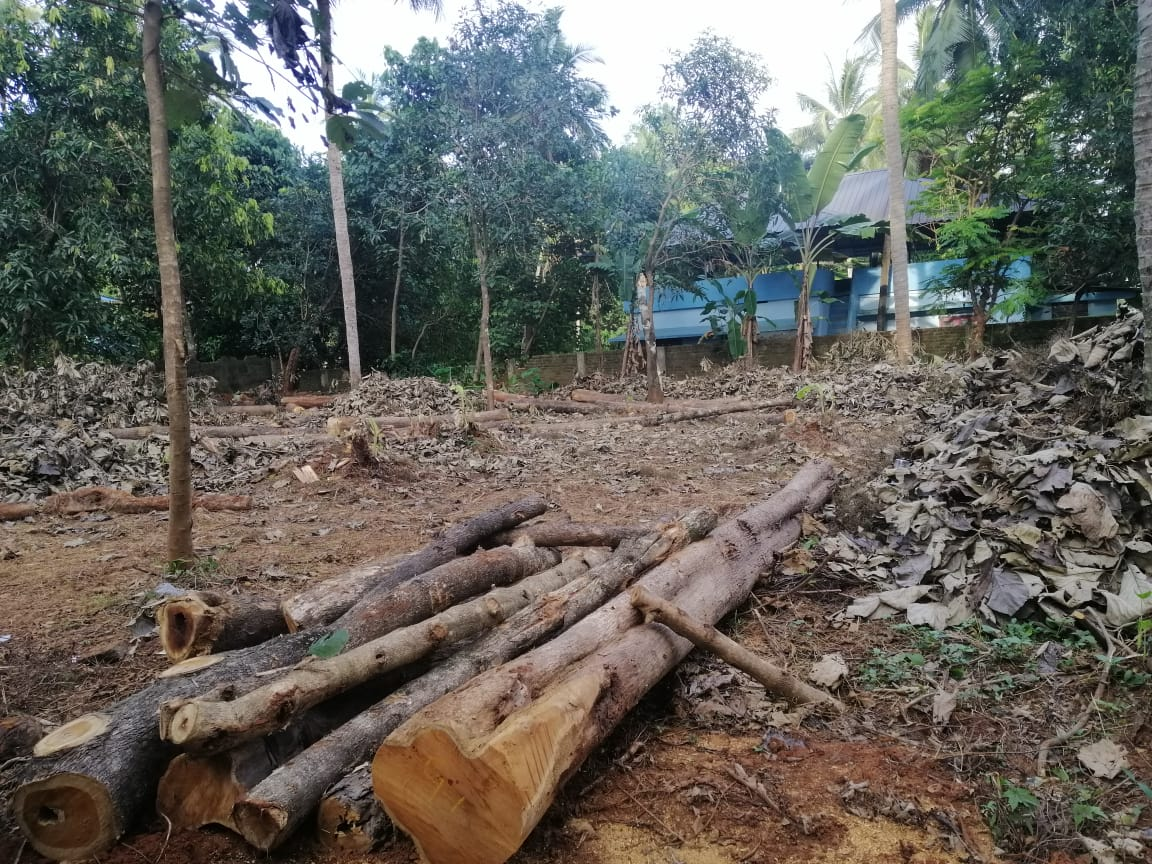 Residential land for sale in poochatty, nadathara.