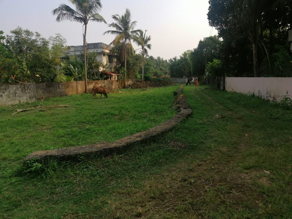 Good residential land for sale in Kuttur