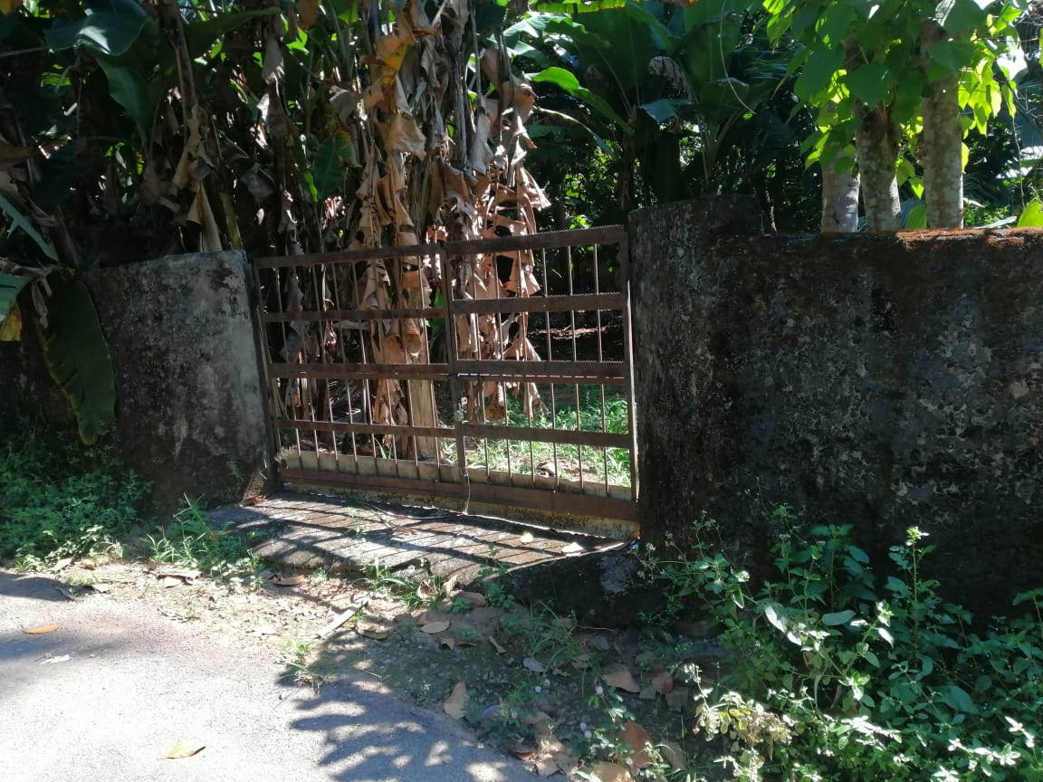 Residential land for sale Ollur Anakallu. Good residential land with only 6km from thrissur city.Total land area is of 16 cent.Peaceful area with bus route. Compound wall with gate is availible. The rate is only 6.5lakhs per cent (Negotiable)