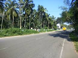 14000 Sq.Feet Land with 85 Feet Frontage to NH 66, Near Thrissur
