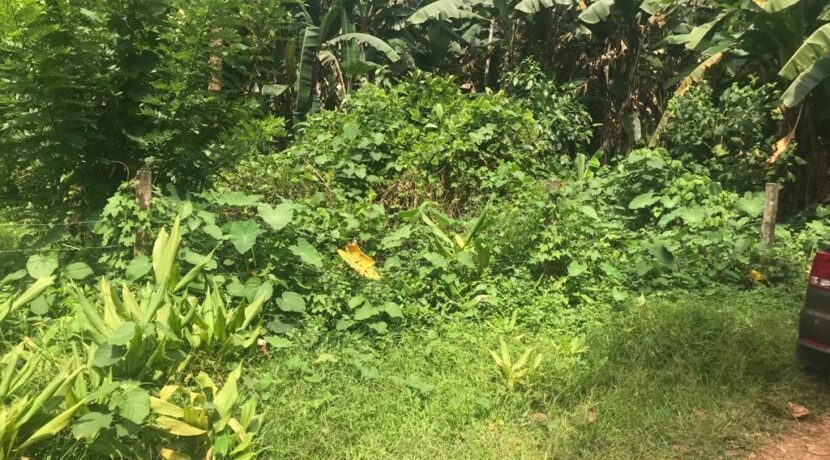 land near bharanaganam2