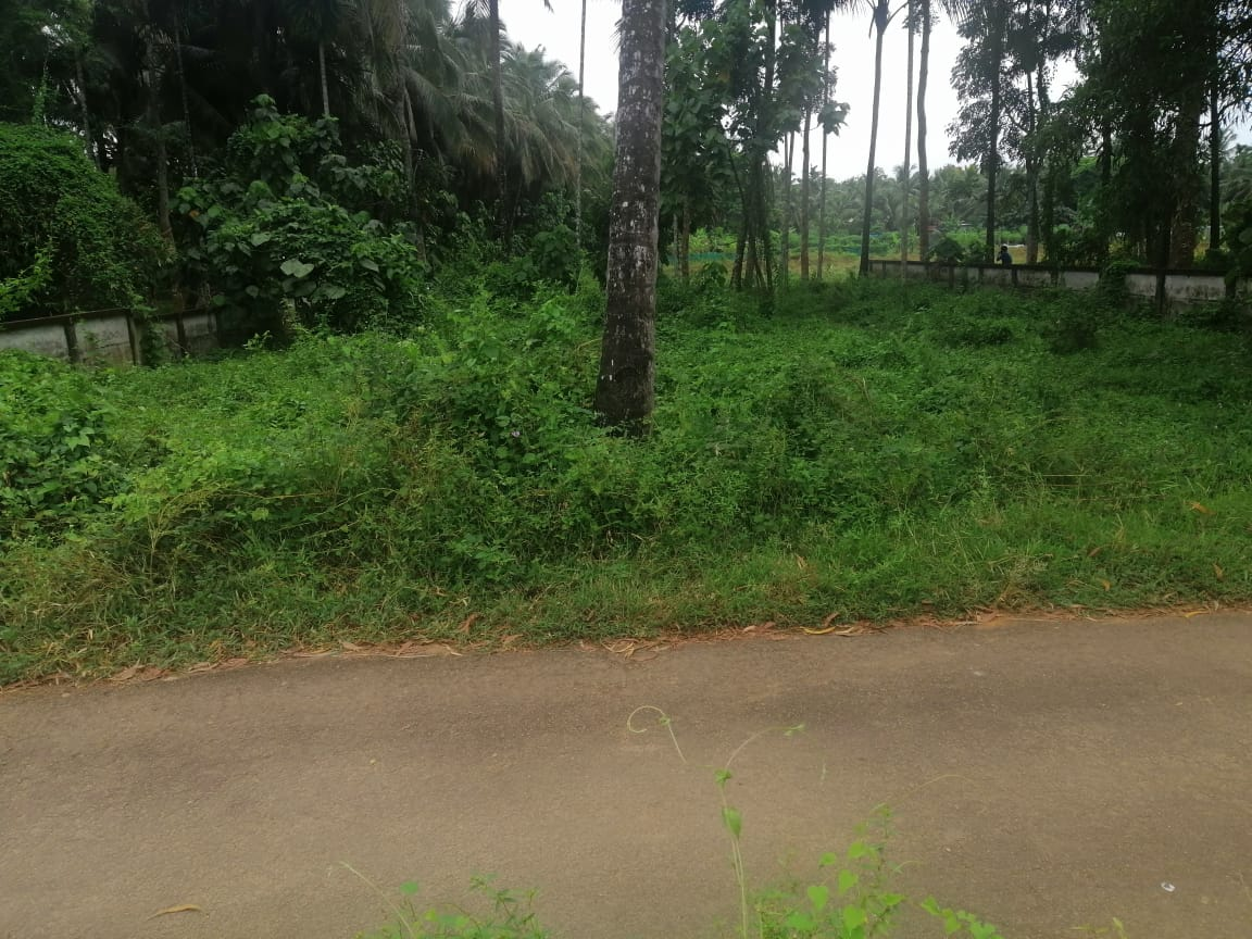 Residential land for sale in MulankunnathuKavu, Thrissur