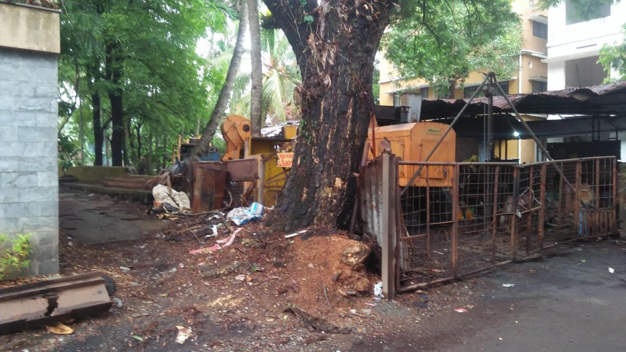 Urgent sale 5 cent Land in Panampilly nagar, Kochi