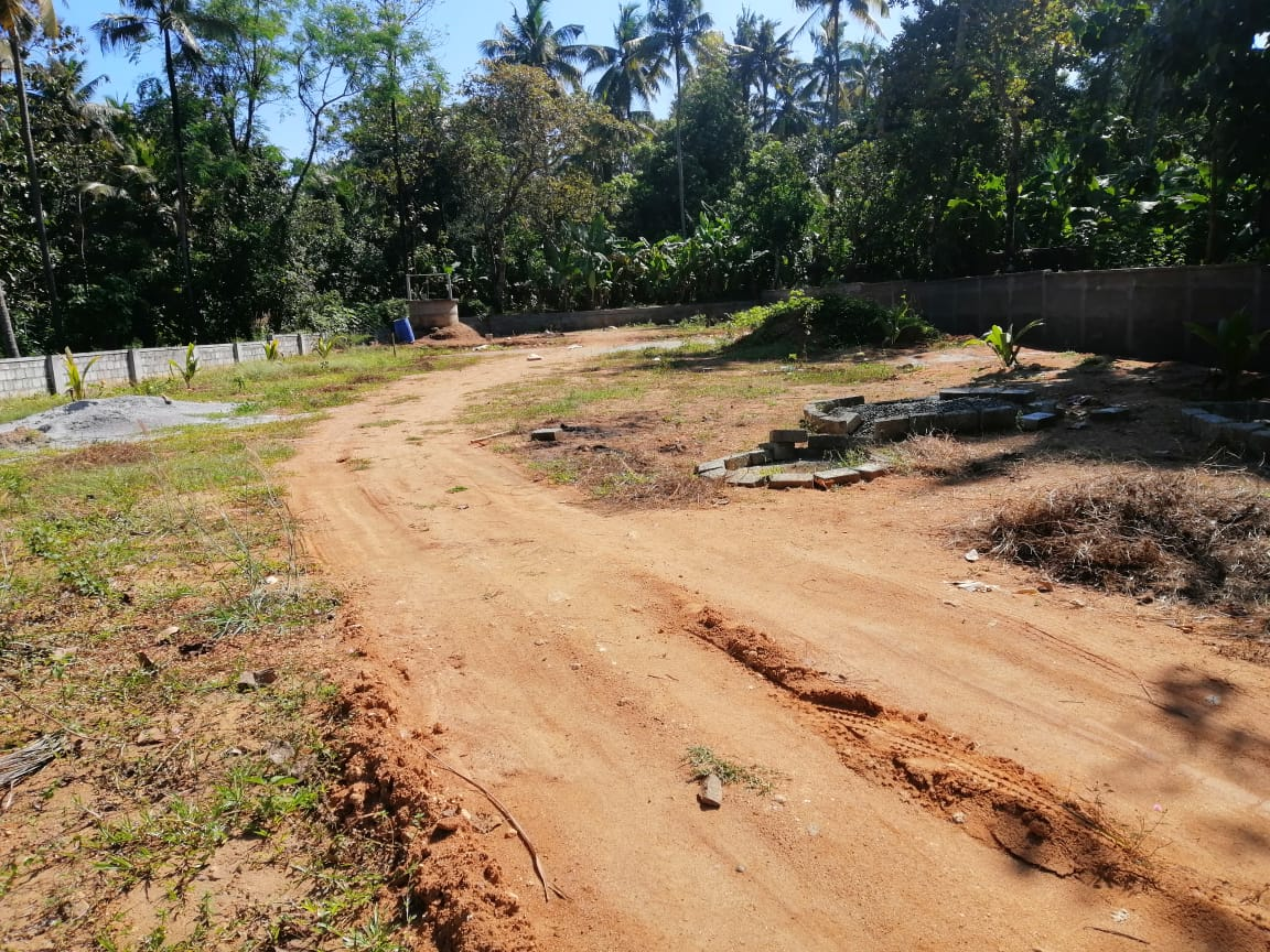 43 cent Residential cum Commercial land for sale in Parlikkad