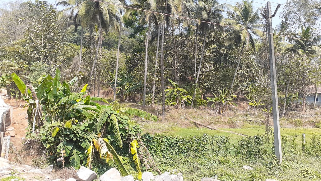 110 cent commercial land for sale in Kuthiran ,Thrissur