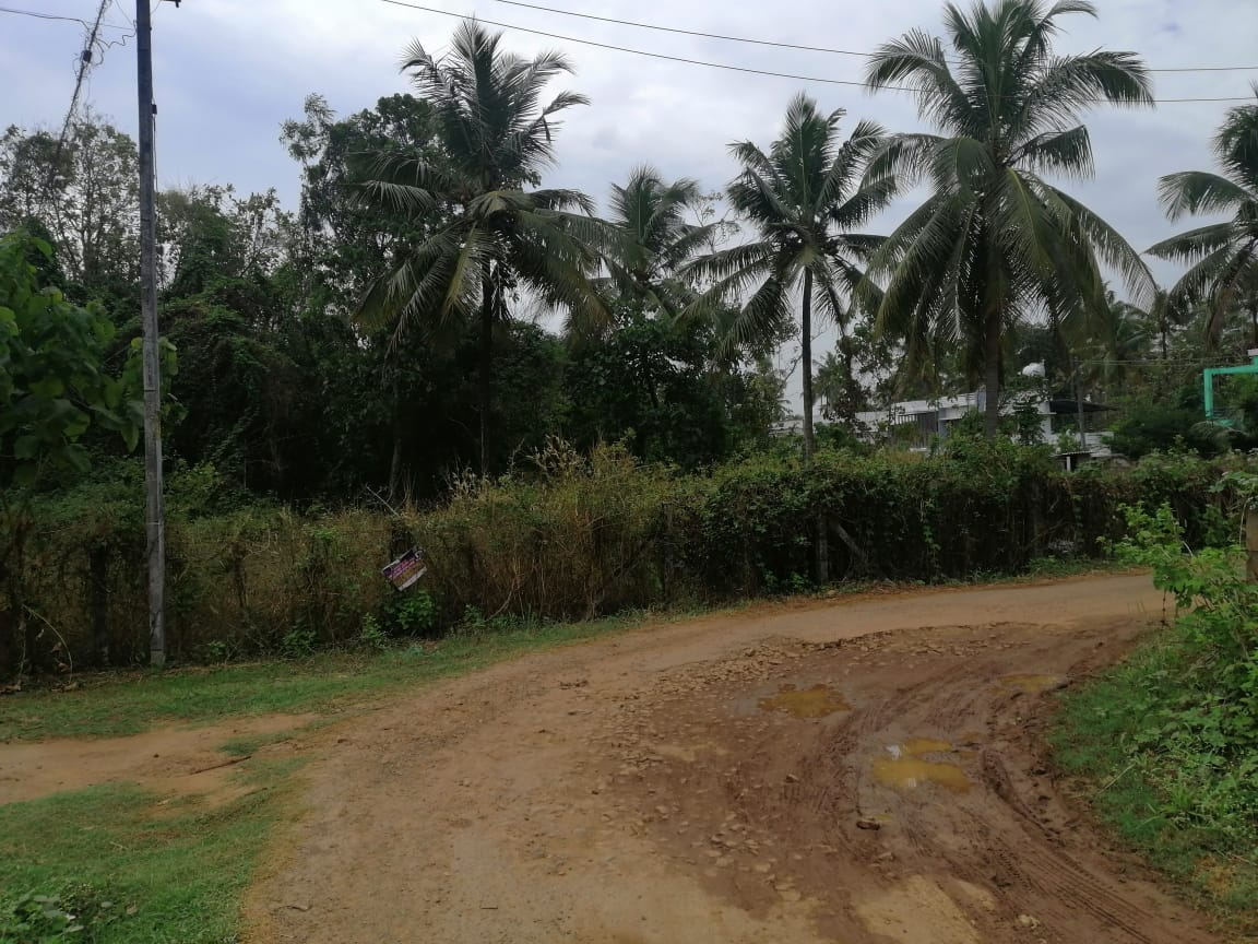 7.5 Cents Land for sale in Poochinnipadam Thrissur.
