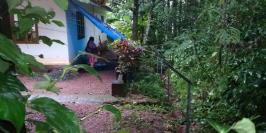12 cent Agriculture Land for sale in Chingavanam, Kottayam