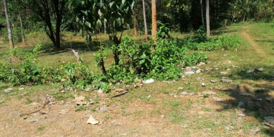 3 Plots of 7.5 , 8.5 and 12.5 Cents of Land  for sale in Velur, Thrissur.