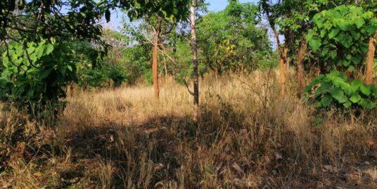 Residential land for sale Velappaya.