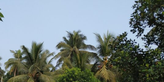 House for sale with nearly 9 cents of land.Arayadathupalam, Mavoor Road / Puthiyara , Kozhikode