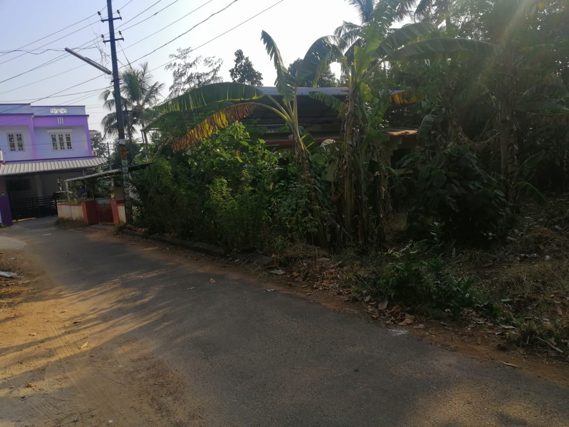Residential land for sale Ayyanthole. Good residential land with only 2km from Thrissur city.Total land area is of 5 cent.Compound wall availible, peaceful area. The rate is only 8.25 lakhs per cent (Negotiable).