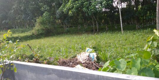 12 cent land for sale in Chalakudy near kormola church.